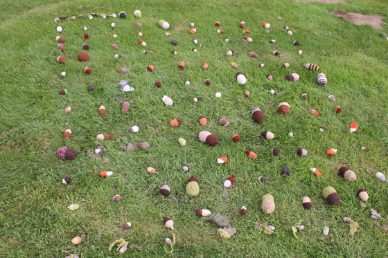 yarnbomb acorns